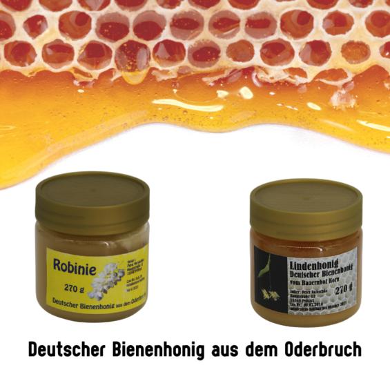 Honig aus dem Oderbruch